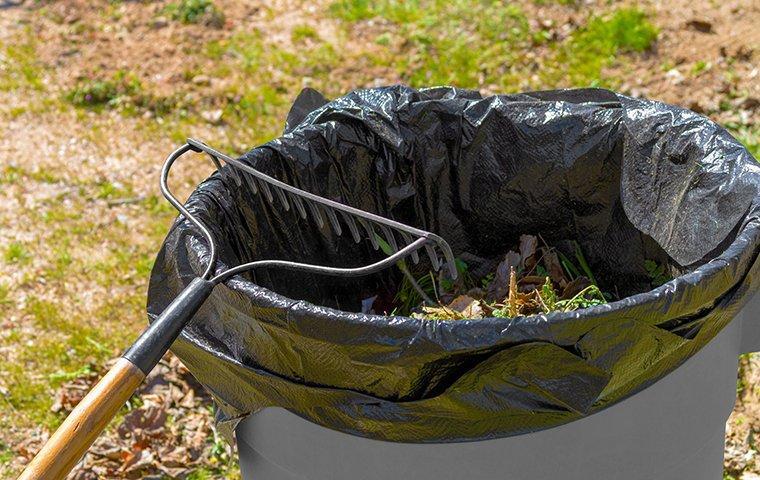 a trash can and metal rake in a yard
