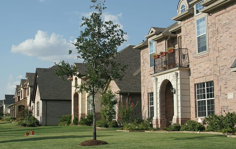 a neighborhood of high class home in colorado all protected by year round pest control solutions