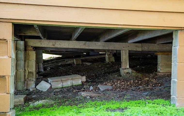 an open residential crawl space damaged by rodents on the queen creek arizona area