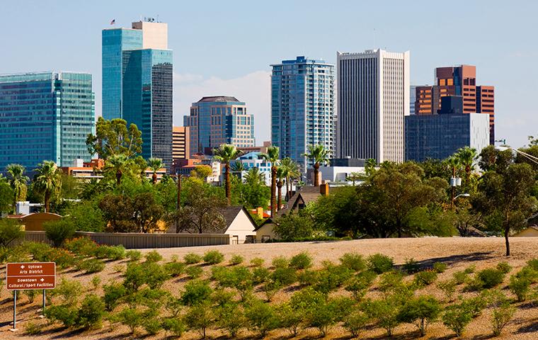 panoramic view in arizona