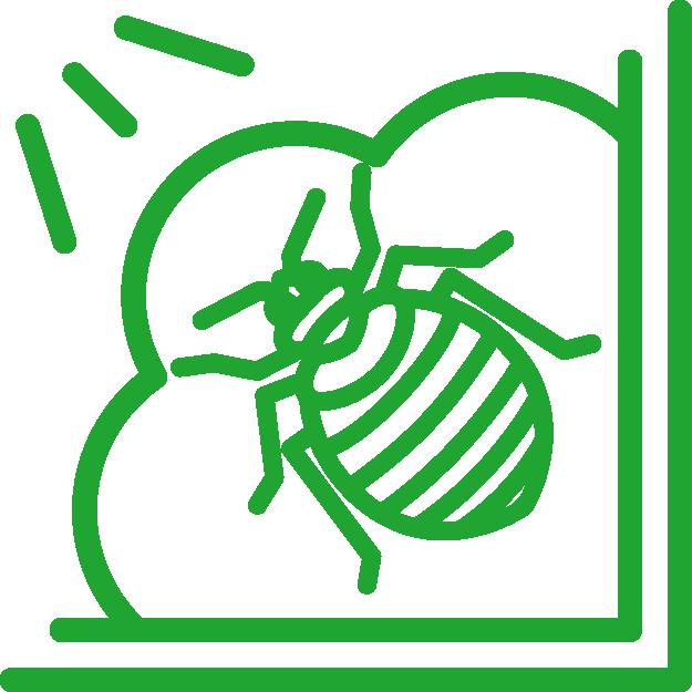 fumigation icon