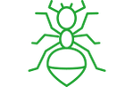 green ant control icon