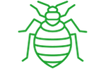 a green bed bug icon