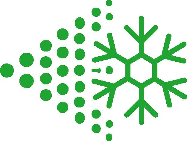 rapid freeze icon