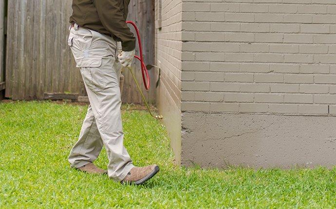 pest control technician treating for ants around home