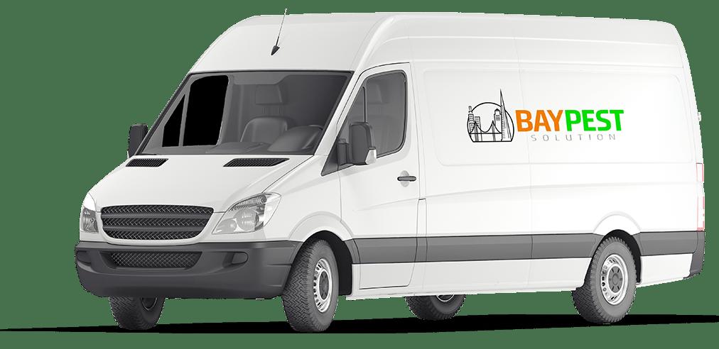 bay pest solution van