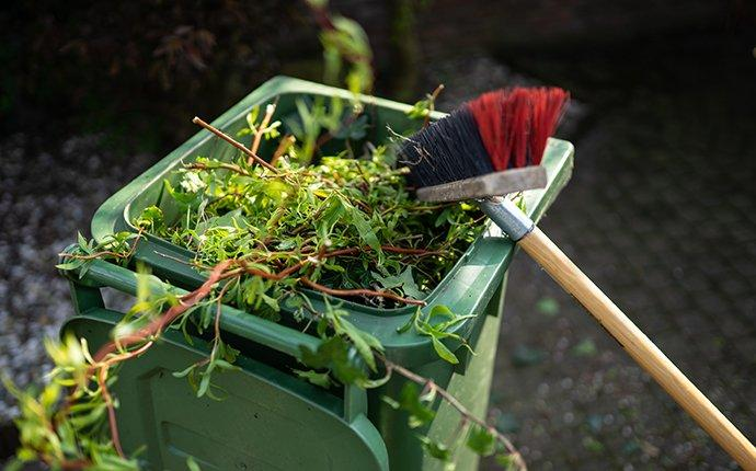 fall pest prevention by fall yard cleanup