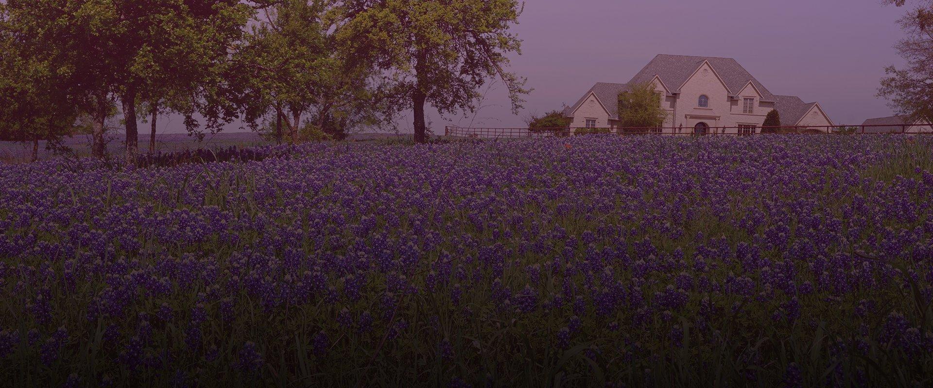 beautiful texas home