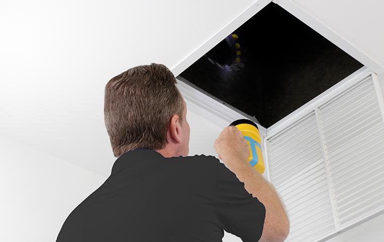 tech inspecting home