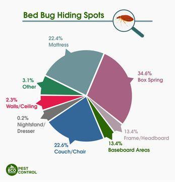 bed bug hiding spots circle chart