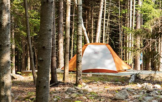 tenting near acadia national park