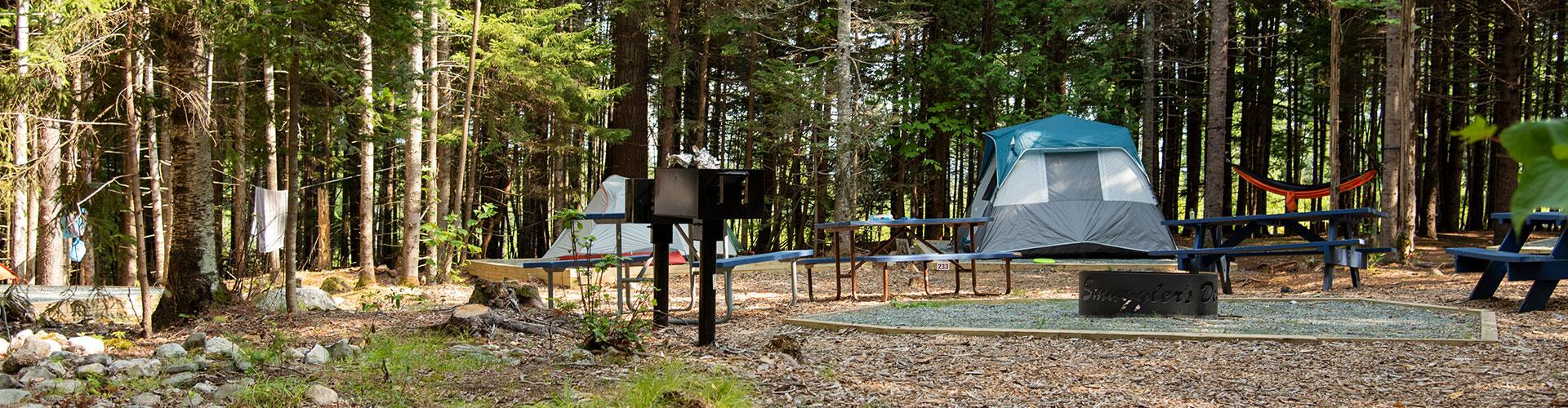 campsite on mount desert island, maine