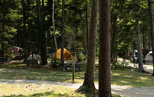 tent camping near acadia national park