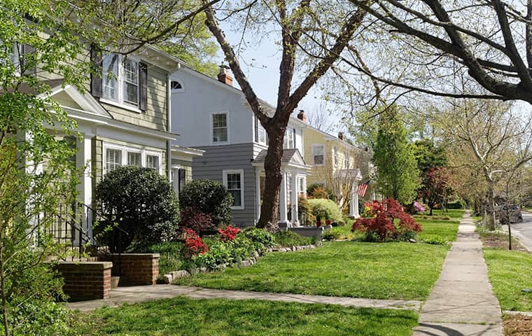 a residential neighborhood of houses serviced by miche pest control in ashburn virginia