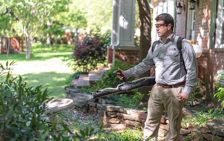 a pest control technician spraying a baltimore maryland yard for mosquitoes & ticks