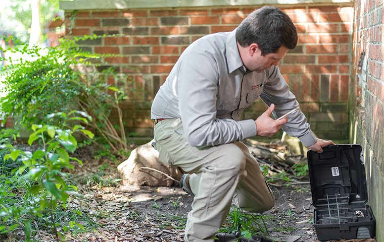 a pest control technician servicing a rodent trap outside a baltimore maryland home