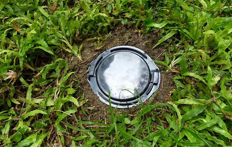 a trelona® advance® termite baiting system installed in a washington d.c. yard