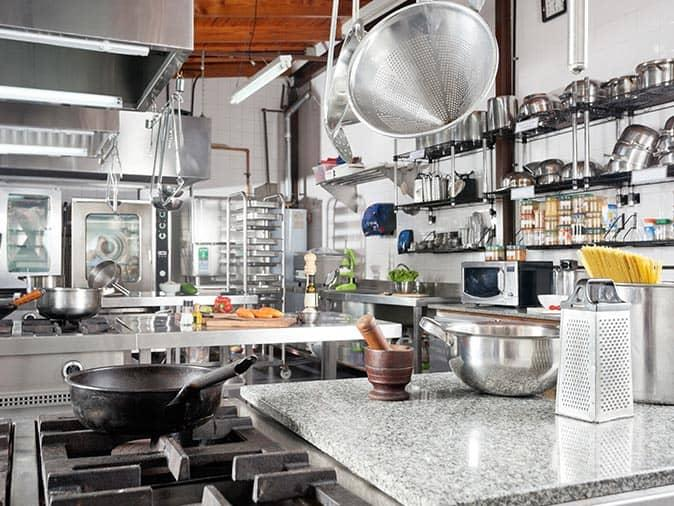 professional protected nj kitchen from pests