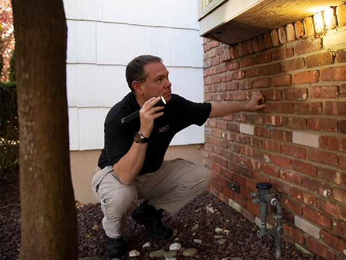 tech inspection common points of entry for termites into new jersey home