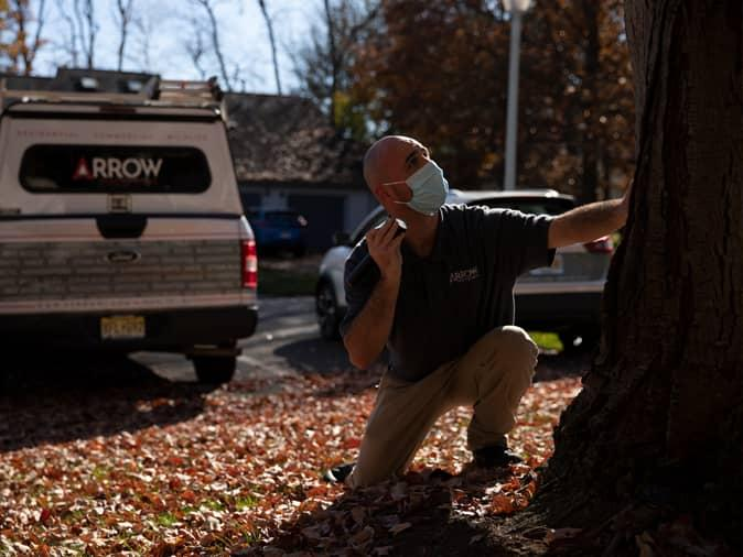 professional pest control tech inspecting a tree outside a NJ home