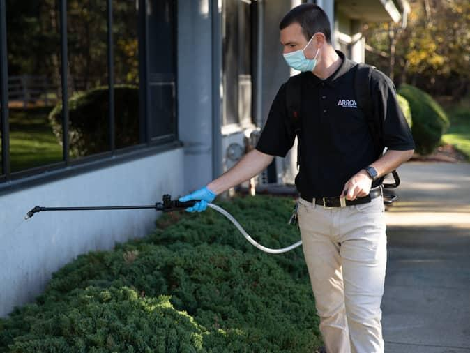 professional pest control for new jersey businesses