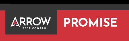 the arrow promise logo