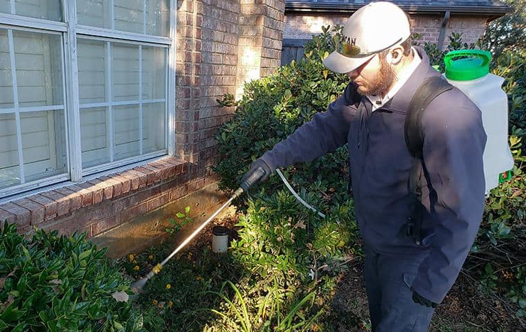 service technician applying a treatment for termites for a home in north dallas texas
