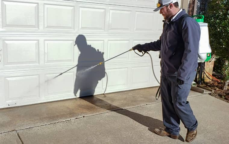 service technician applying insecticide on a north dallas area business