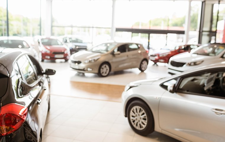 car dealership with many nice cars