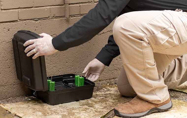technician checking a rodent station outside home