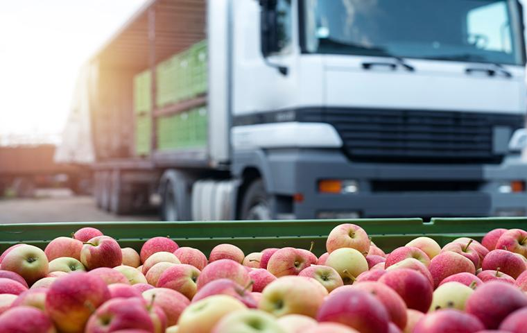 box of apples in front of trucks