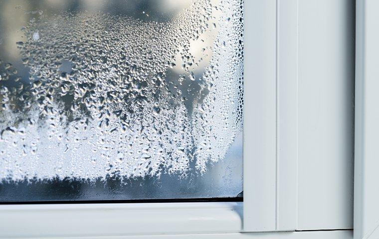 moisture on window