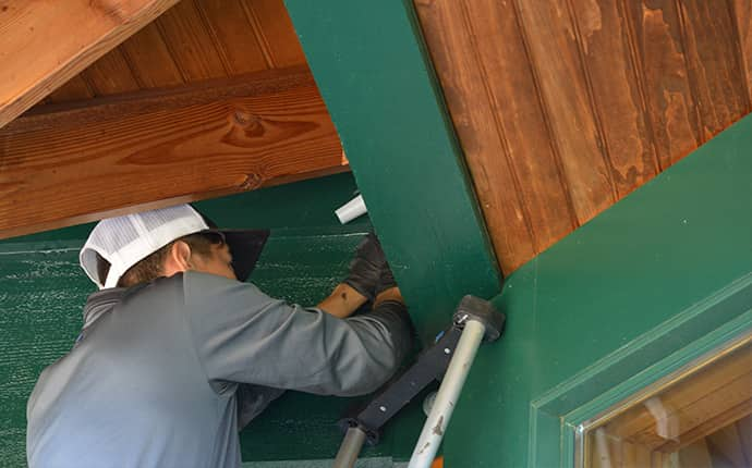 a prosite pest control service expert inspecting a central washington home for bats