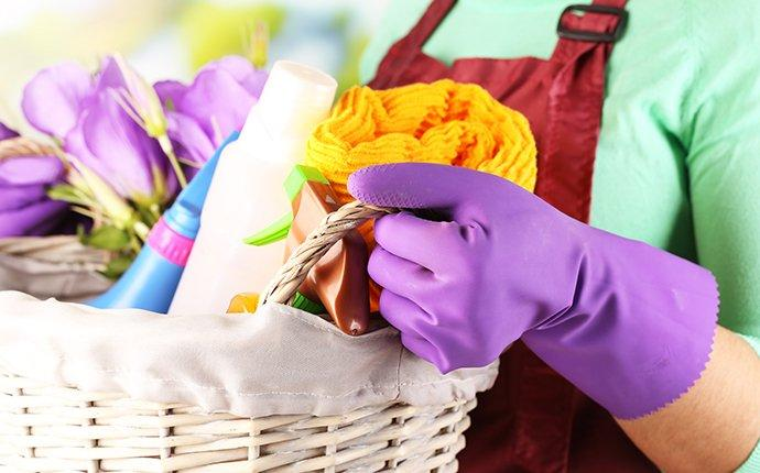 a spring cleaning pest prevention basket