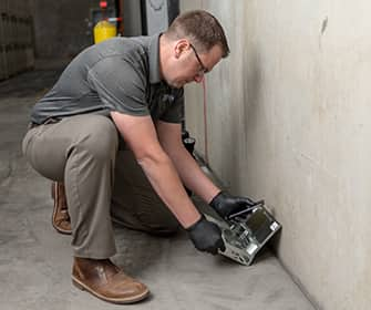 a prosite pest control service expert setting up a rodent station inside of a commercial business in washington