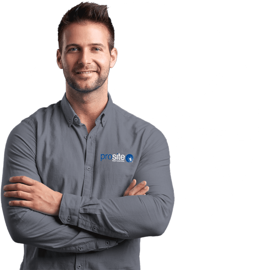 prosite pest control professional serving central wa