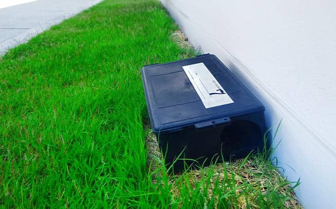 a rodent trap on the exterior of a washington home
