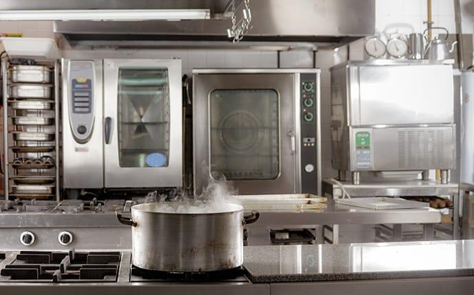 pest control in a commercial kitchen