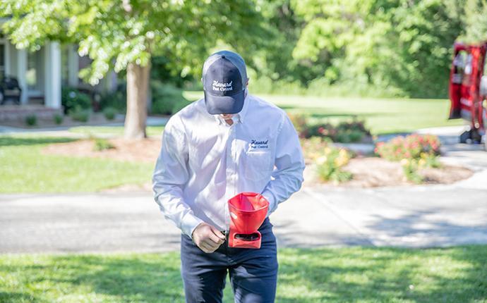 havard tech treating yard for ants