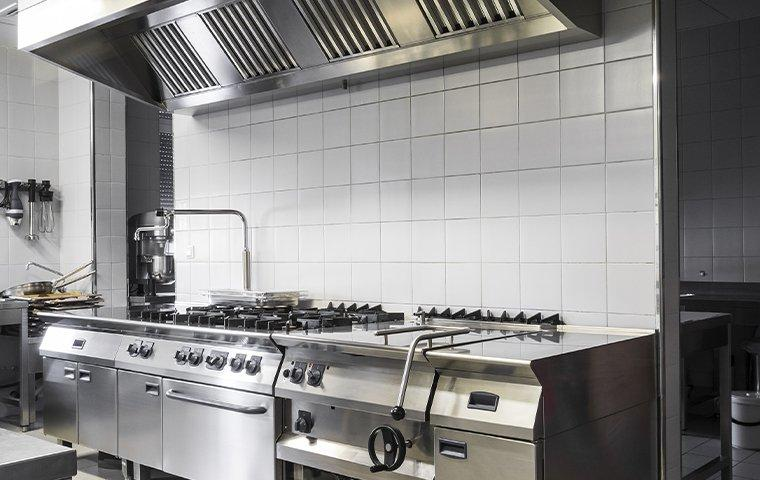 commercial kitchen that is pest free