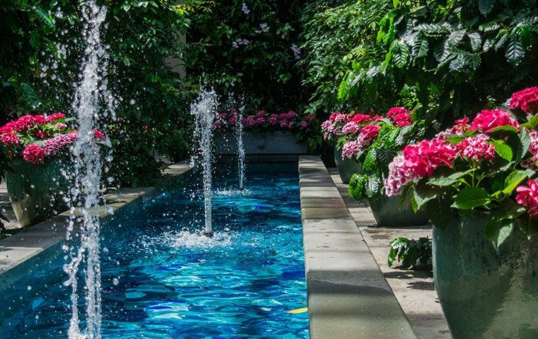 a landscaped backyard with a stone edged pool