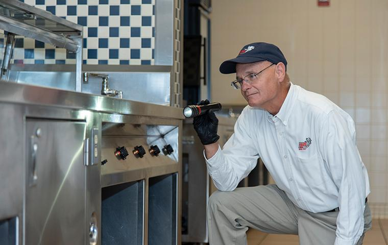 pest control tech checking for pest sign in commercial kitchen