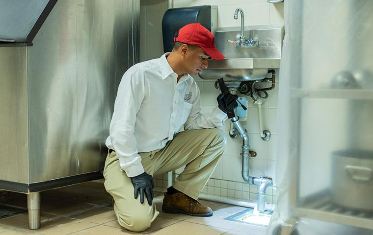 tech inspecting commercial kitchen drain with flashlight