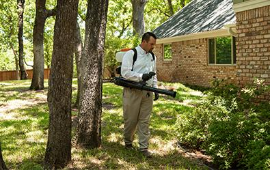 adams tech treating property for mosquitoes