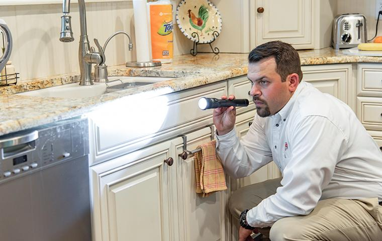 pest control tech inspecting for pest sign in kitchen