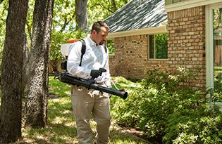 technician treating around home for mosquitoes