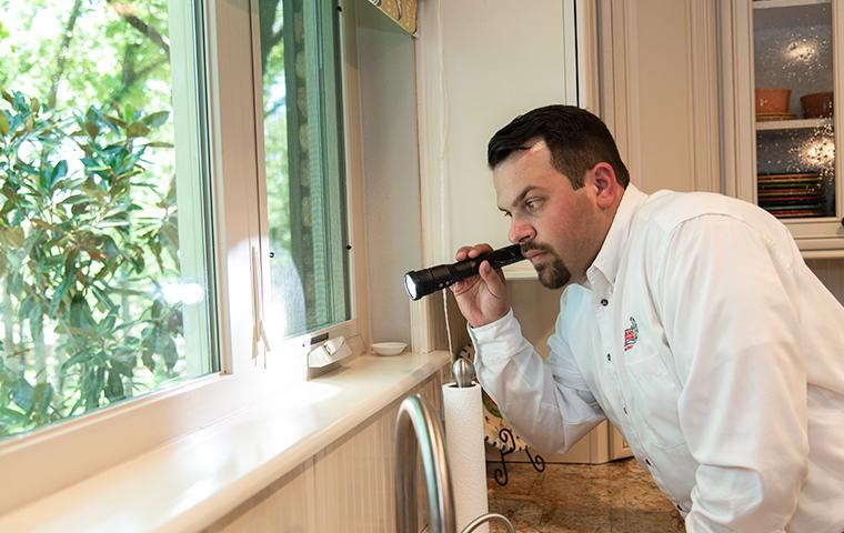 tech inspecting windowsill in home