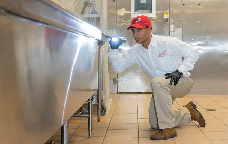 pest control technician inspecting commercial kitchen