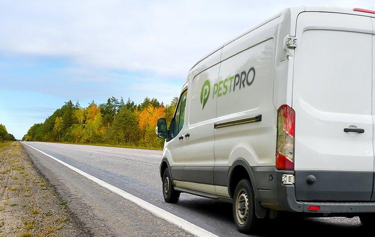 pest pro company van driving down the road