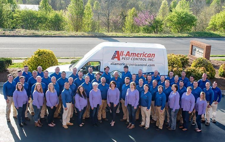 all-american pest control team
